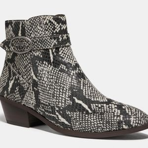 Coach snakeskin boot Bootie size 6 NEW